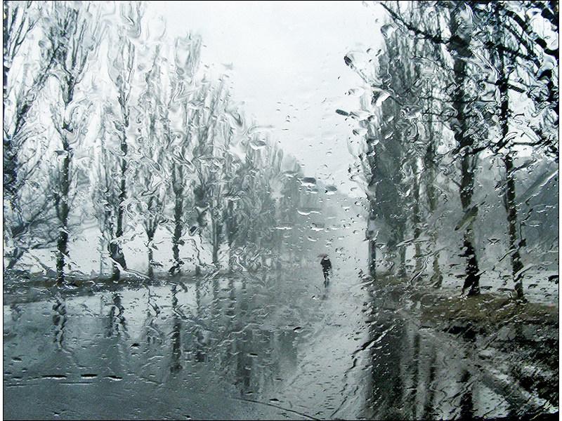 ВМЧС сказали обухудшении погоды в столицеРФ